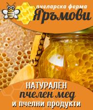 Натурален пчелен мед град Трявна